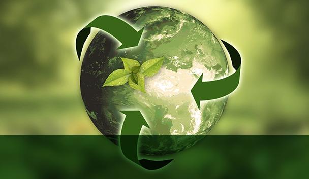 Globo_Natureza_Sustentabilidade_ClienteSA.jpg